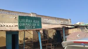 Organisation för kameler i nöd